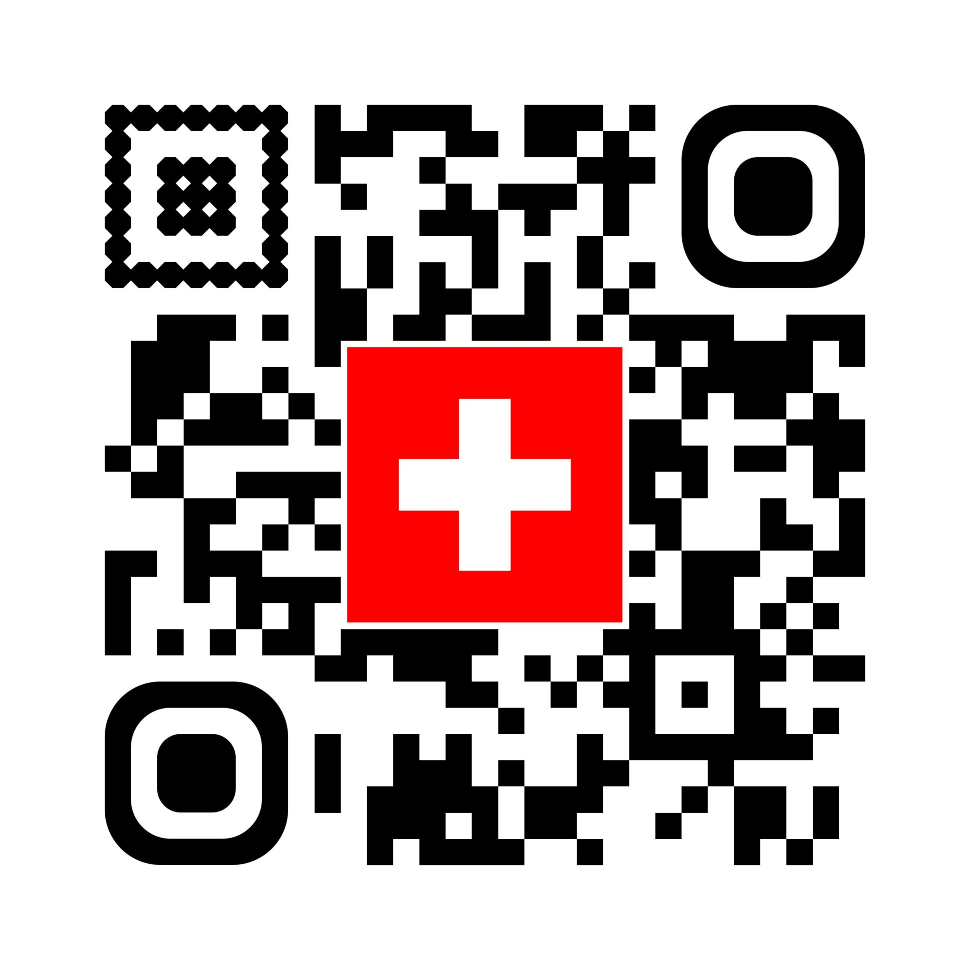 SWISS MEASURE AND CONSULTING SERVICES